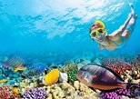 5 in 1 Discover Cancun (Ruins, Shopping, Puerto Morelos, Snorkel & Cenote)