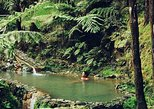 Center of the Island - Fire Lake, Thermal Pool, Pineapple and Tea Plantation