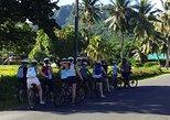 'Discover' Rarotonga Cycling Tour with Lunch