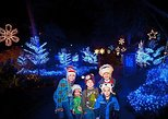 Christmas in the Wild at Tampa's Lowry Park Zoo