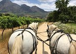 1.5 Hour WINE TASTING Carriage Trail
