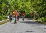 Mexico - Cozumel: E-Bike Adventure in Cozumel - West Side Ride N' Snorkel
