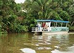 Full-Day Caño Negro Wildlife Refuge Boat Tour