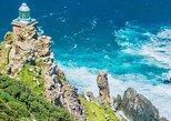 Cape Point and Boulder's Beach Penguins Tour: Including Park fee
