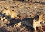 3 Nights Victoria Falls , Chobe Safari and Hwange National Park Safari