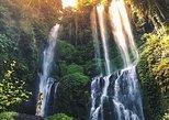 All Inclusive Tour: Sekumpul Waterfall Trekking, Handara Gate, Ulundanu Temple.