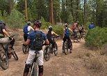EcoBike Adventures | Lost Sierra - Electric Bike Tour