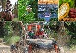 Caribbean - Dominican Republic: 5 Activities! Horseback Riding - Zip Line - City Tour - Safari - Dune Buggy