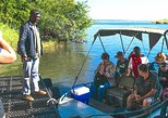 Africa & Mid East - Botswana: Chobe Day Game Safari: From Kasane