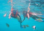 Mexico - Riviera Maya & the Yucatan: Catamaran Isla Mujeres with transportation from Cancun.