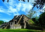 Private Altun Ha Maya Ruin & Belize City Adventure From Belize City