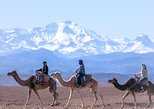 Afrika & Mittlerer Osten - Marokko: Day Trip:Berber Villages and 4 Valleys Atlas Mountains &Waterfu l& camel Ride