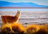 3days 2nights Uyuni salt flat from La Paz