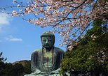 Kamakura Private Tour based on your request