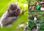 Private Bali Tour: Amazing of Ubud Tour