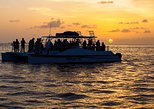Key West Dolphin Watch Sunset Snorkel Cruise