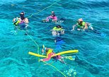 Group Snorkeling at Coffin's Patch Reef