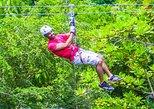 Falls Flyer Zipline and Dunn's River Falls Adventure Tour from Kingston