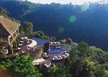 Bali Ubud Hanging Garden Day Tour with Private Transport