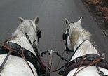70 Minutes Trip--Carriage Ride by Fiaker Wien
