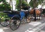 30 Minutes Trip--Carriage Ride by Fiaker Wien