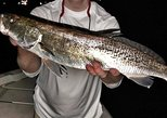 3 HR night time dock light fishing