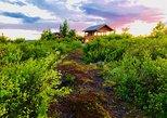 Midnight Sun Backcountry Hike