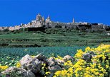 Mdina, Dingli cliffs and San Anton Gardens guided tour, Mgarr, MALTA