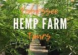 Tennessee Hemp Farm Tour