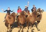 Gobi Desert tour 4D