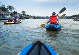 VISIT SERBIA: River Kayaking Adventure in Belgrade
