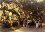 bonaventure cemetery after hours tour