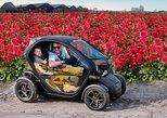 Drive it yourself electric Dahlia Flower Fields GPS audio tour