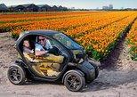 Fahren Sie selbst zu Tulpen- und Blumenfeldern mit der elektrischen GPS-Audiotour