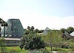 Admission to San Antonio Botanical Garden