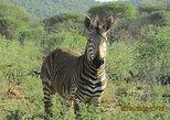 3 days Etosha National Park- Budget- Camping