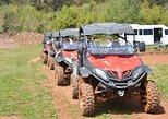 BUGGY SAFARI-UTV TOURS
