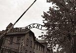 From Krakow: Aushwitz - Birkenau Museum Private Transport