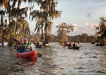 Lake Martin Swamp Tours by Kayak