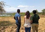 2 Days - Safari at Akagera National Park, Full Game drive