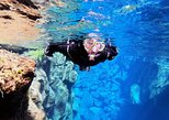 Small-Group Silfra Wetsuit Snorkeling Experience - FREE Photos