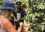 3 days on Chagga Villages by Bike