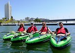 3 hour Kayaking Tour of Vienna