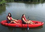 Kayak Rentals 3 hours