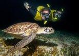 Mexico - Riviera Maya & the Yucatan: Moonlight Bioluminescence Snorkeling Tour in Cancun