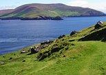 Blasket Islands Eco Tour. Dingle Bay, Co Kerry. Guided. 4.5 hours