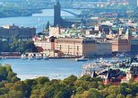 Private Stockholm City Tour by VIP car Vasa and Skansen museum