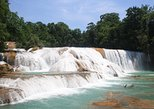AGUA AZUL and MISOL-HA FALLS - (Private Tour from Palenque)