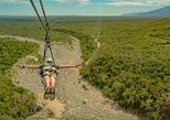 Mexico - Baja California Sur: Outdoor Ziplining and UTV Adventure from Los Cabos