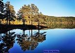 Explore the beautiful nature of Trondheim